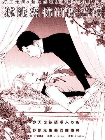 沉睡森林的野蔷薇